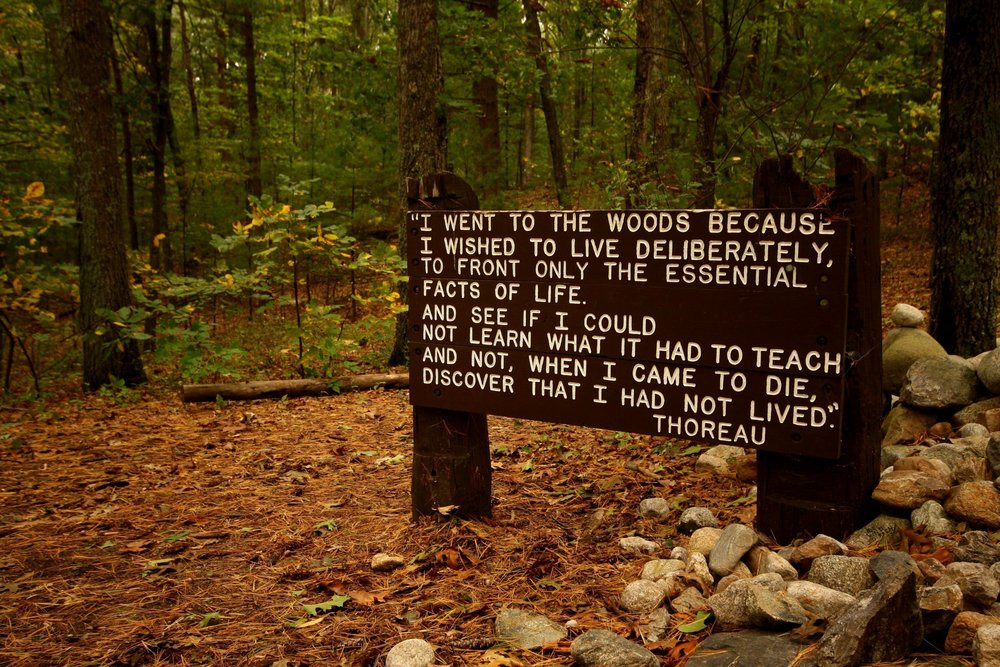 Copy of Henry David Thoreau