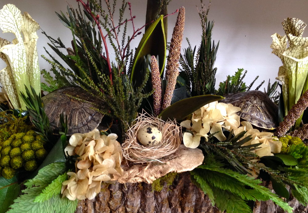 -       flowers, feathers and taxidermy to our