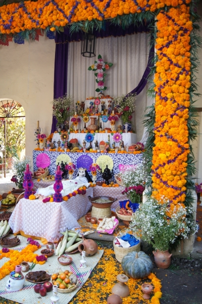 Here is an ofrenda from Cuernavaca, Morelos, Mexico. For the flowers, Tagetes erecta (African or Aztec marigold) is most commonly used. It has a long history of varied medicinal uses.