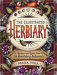 Illustrated Herbiary book.jpg