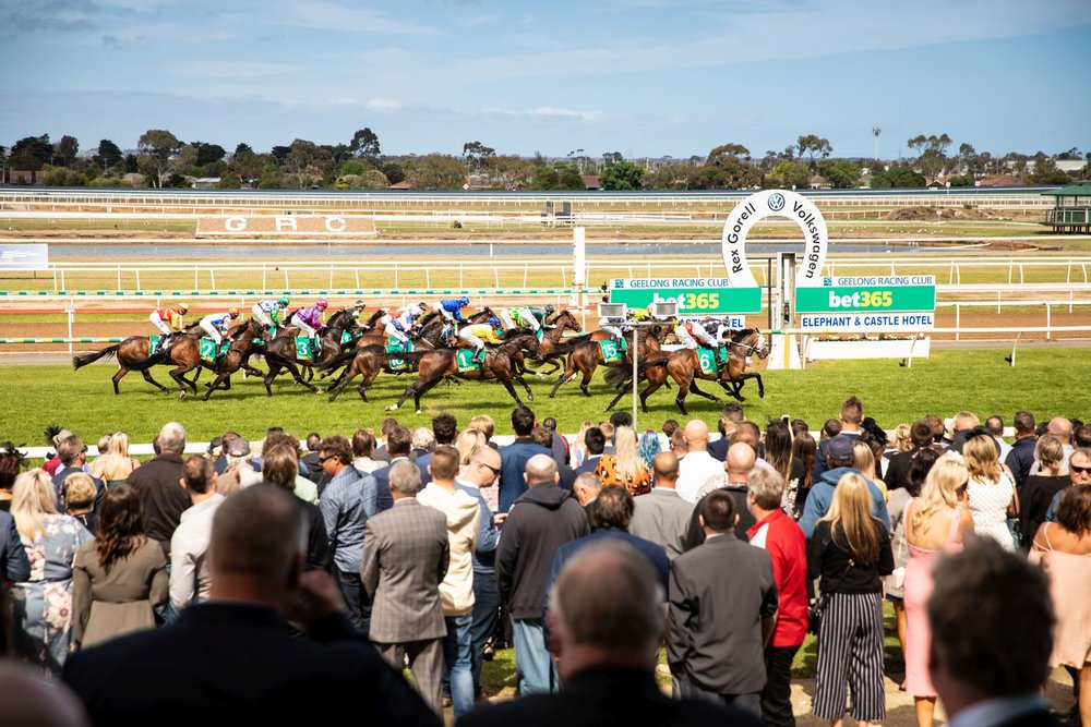 Geelong Cup - Event Photography