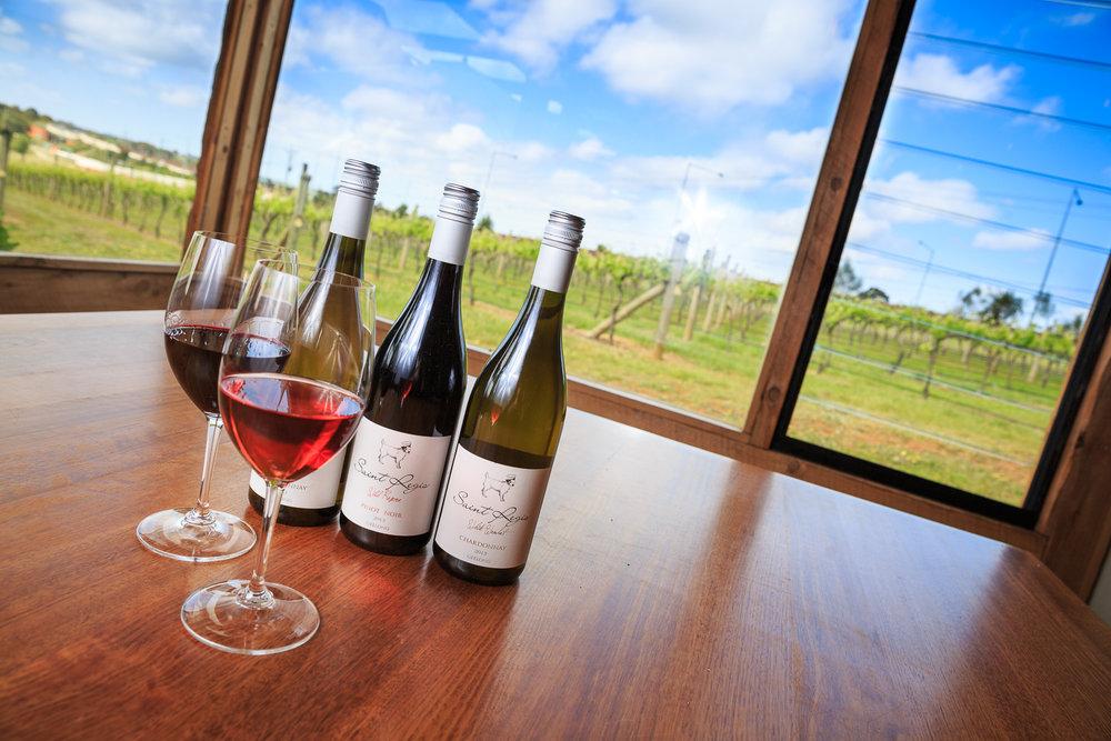 2015-10-13 - Wine Geelong - St Regis Launch-0518.jpg