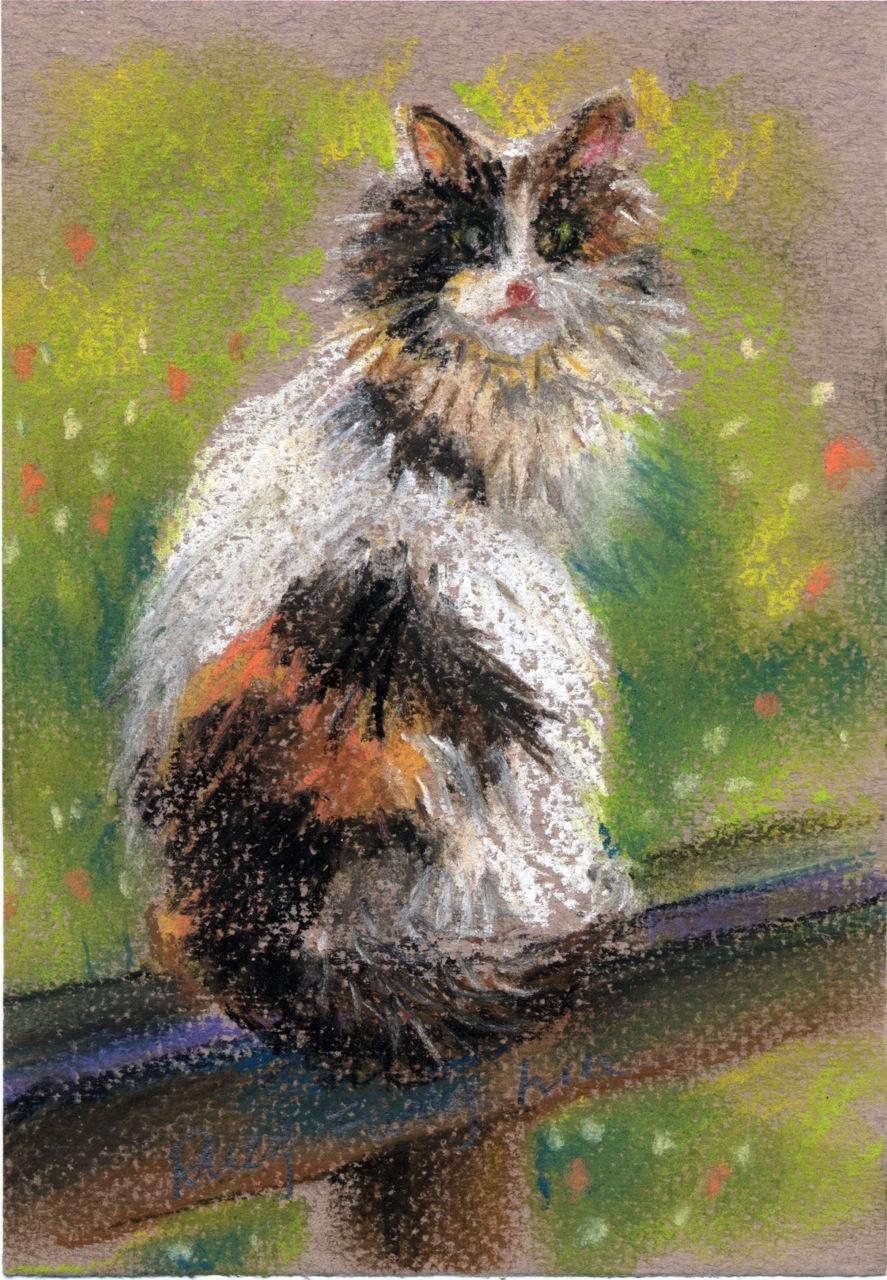 George's Cat
