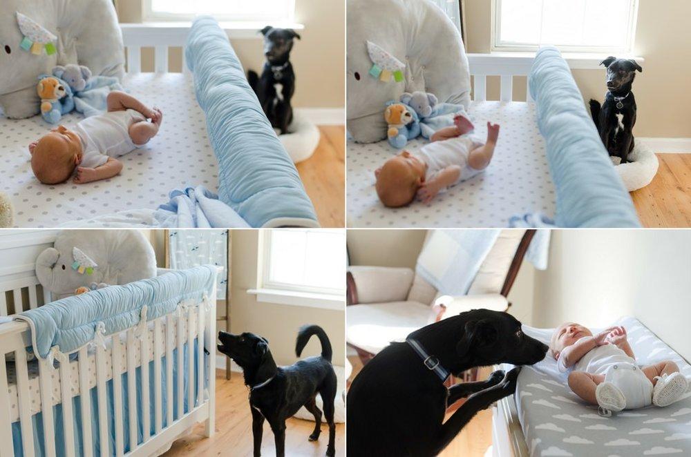 Noah-In-Home-Lifestyle-Newborn-Session-Murfreesboro-Nashville-Photographers+12