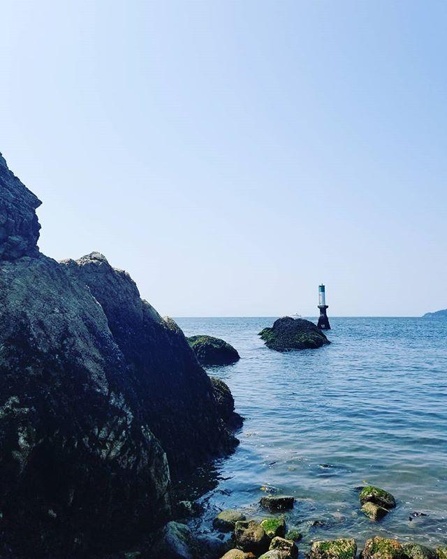 Finding seals and quiet spots #beautifulbc #ohcanada #lastweek #yogatherapy #itsallyoga #stopdropandnidra #chillout
