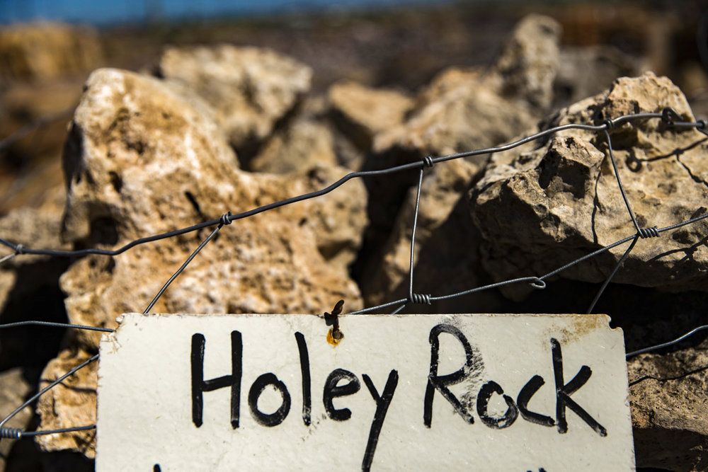 Aquarium Supplies   Holey Rock  Lime Stone
