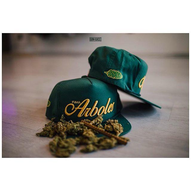 FUMA ARBOLES / 420. 🌳