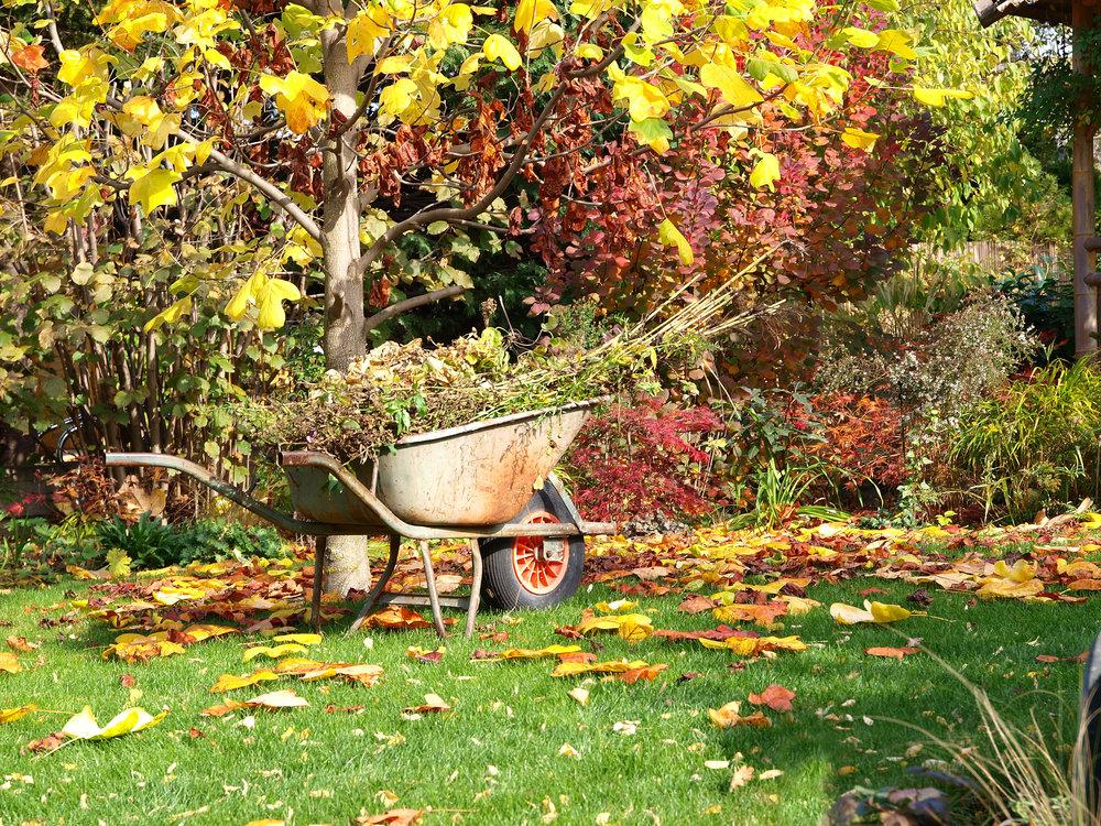 september-garden-jobs-web.jpg