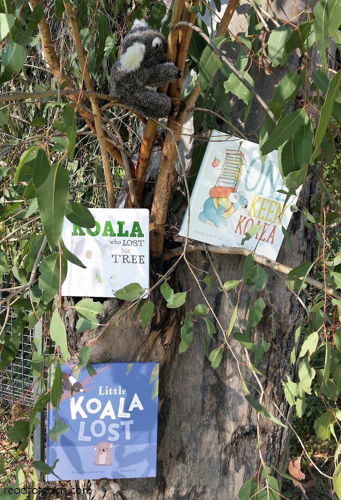 three-koala-picture-books-gumtree.jpg