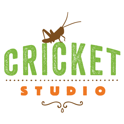Cricket Studio