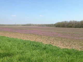 Leaving the vast fields of Kansas behind