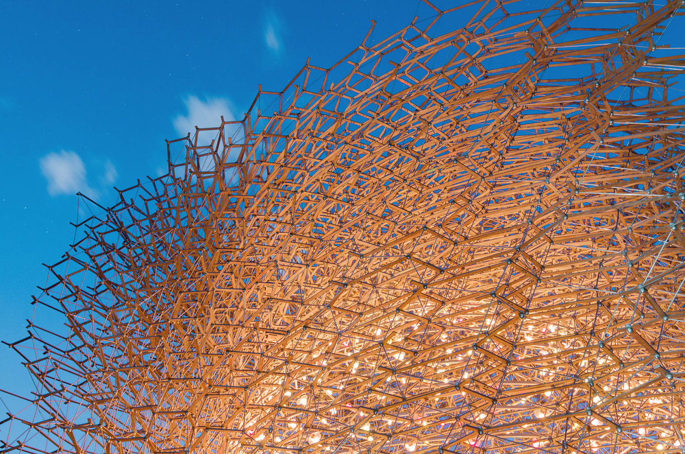 THE HIVE |WOLFGANG BUTTRESS