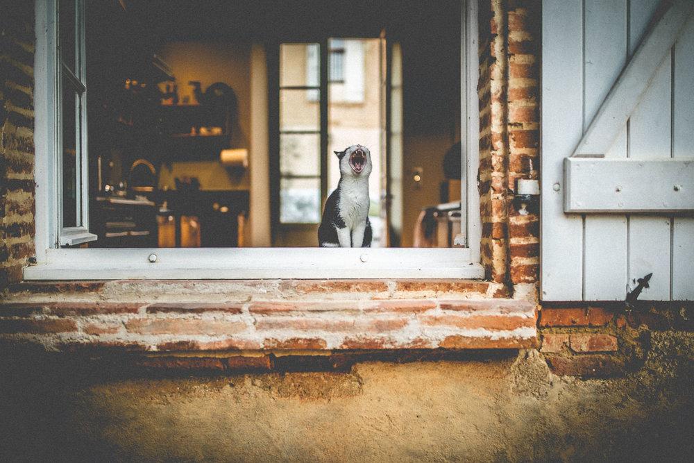 destination wedding photography - u got the love wedding photography-146867.jpg