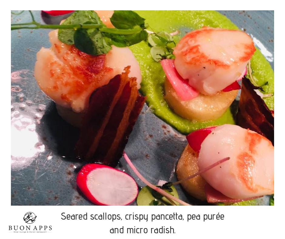 Seared scallops, crispy pancetta, pea purée and micro radish.png