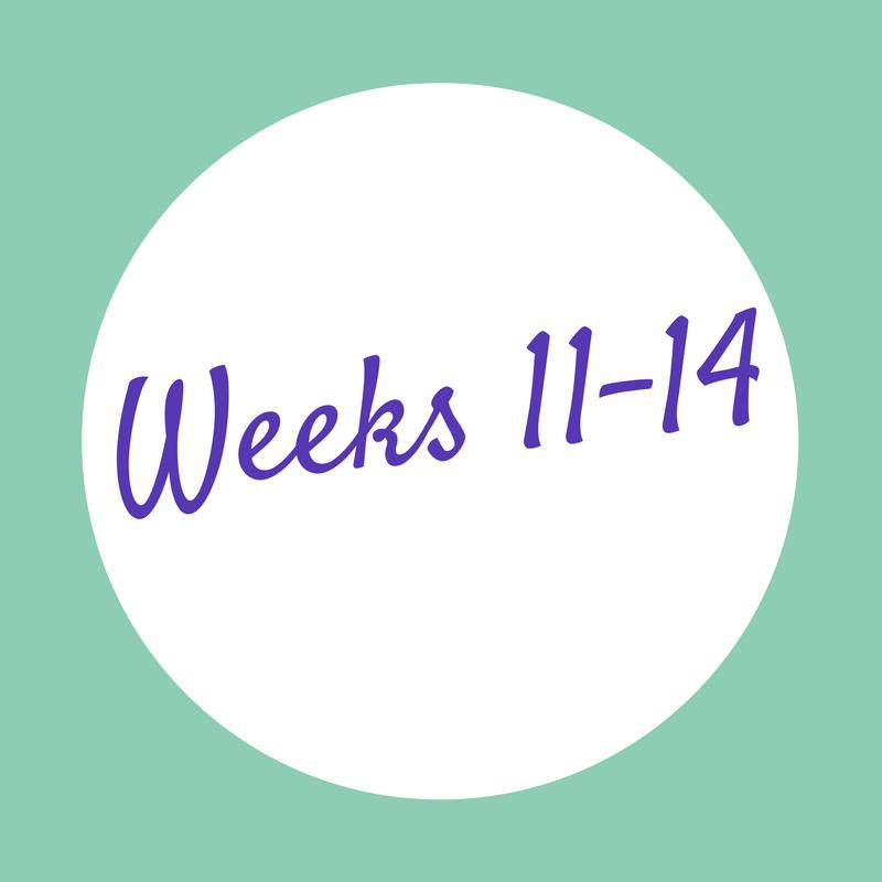 Weeks 11-14.png