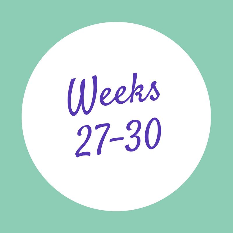 Weeks 27-30.png