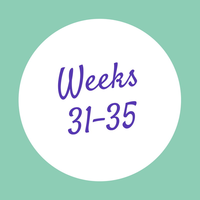 Weeks 31-35.png