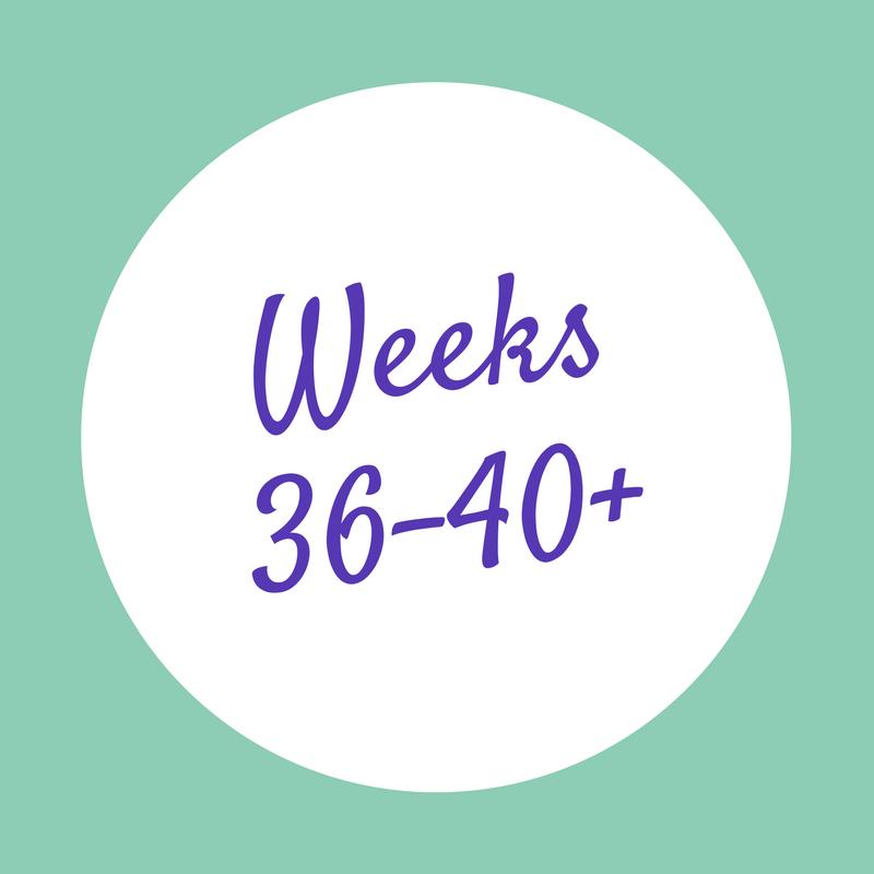Weeks 36-40+.png
