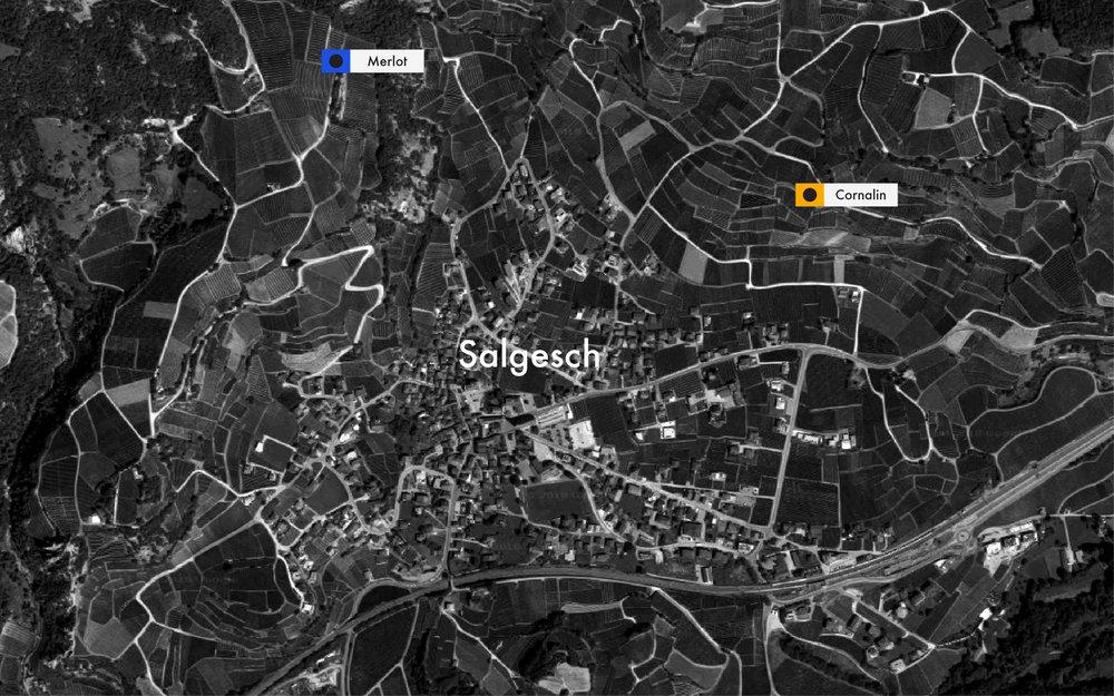 Salgesch Baaam2.jpg