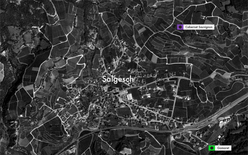 Salgesch Handrix1.jpg