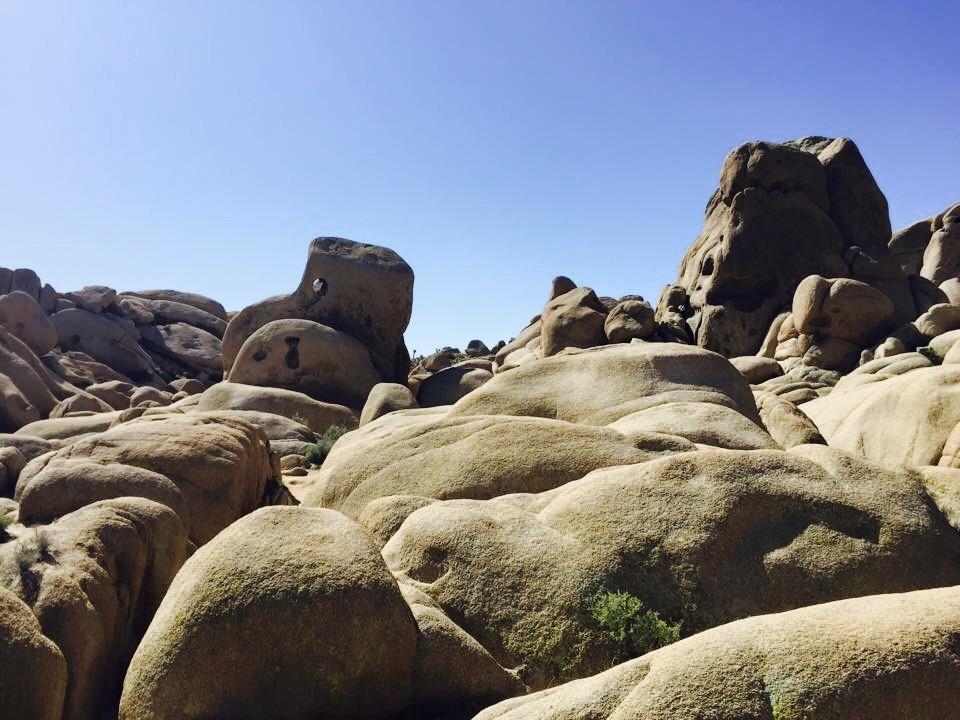 Skull Rock Hike - Joshua Tree National Park