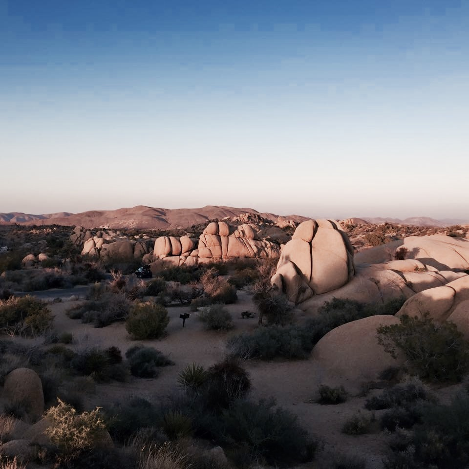 Sunset - Jumbo Rocks - Joshua Tree National Park
