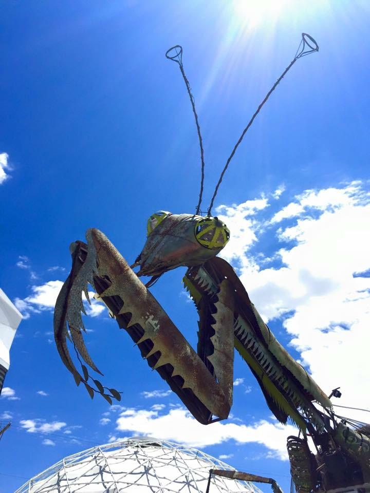 Grasshopper Statue - Container Park - Las Vegas