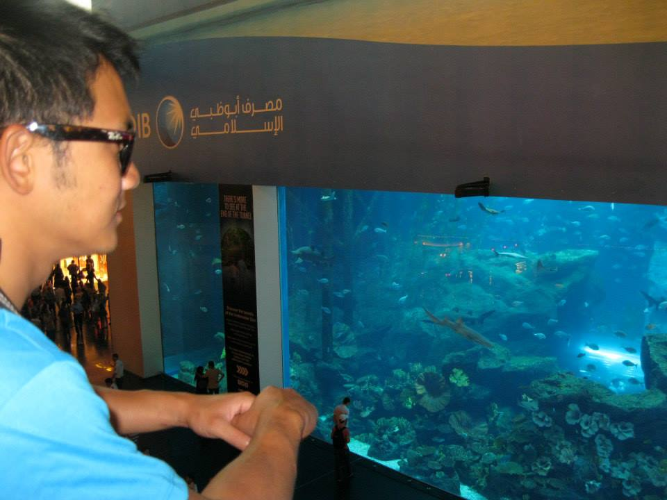 Mall of the Emirates Aquarium
