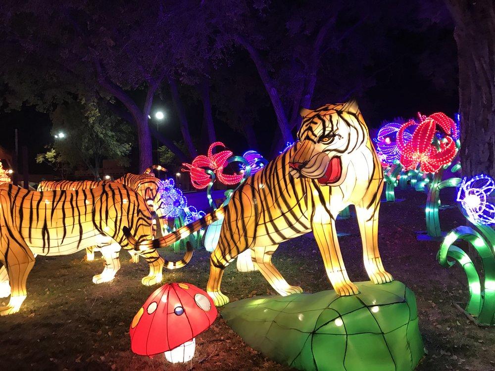 Chinese Lantern Festival - Albuquerque, New Mexico
