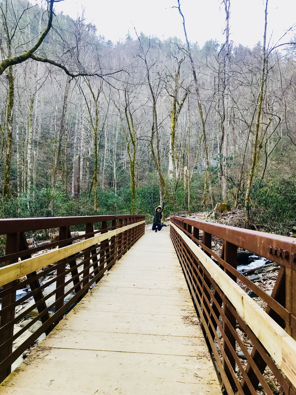 Another lovely footbridge on the Catawba Falls hike. Pregnant ladies can't jump.