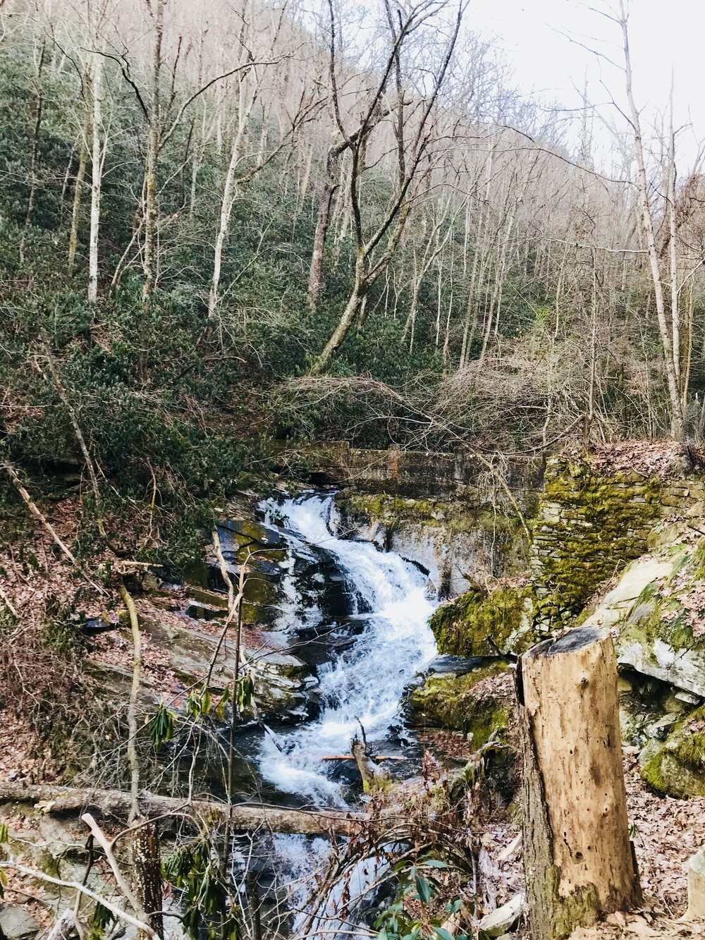 The old breeched dam along the hike.
