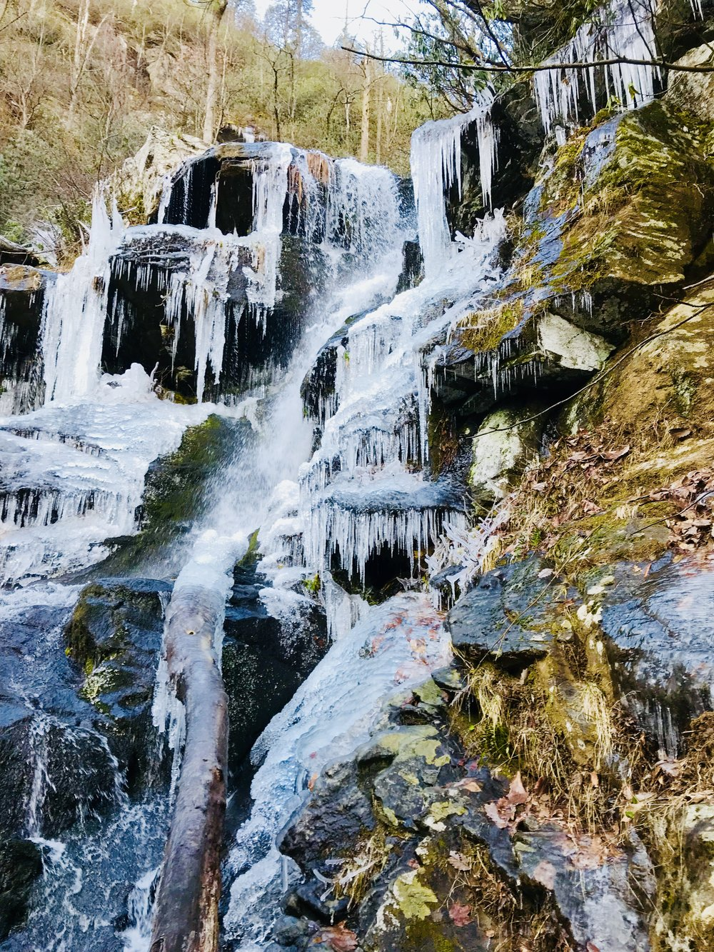 If you hike a little ways up the side of the falls on a frigid day in January, you can see some spectacular icicles.