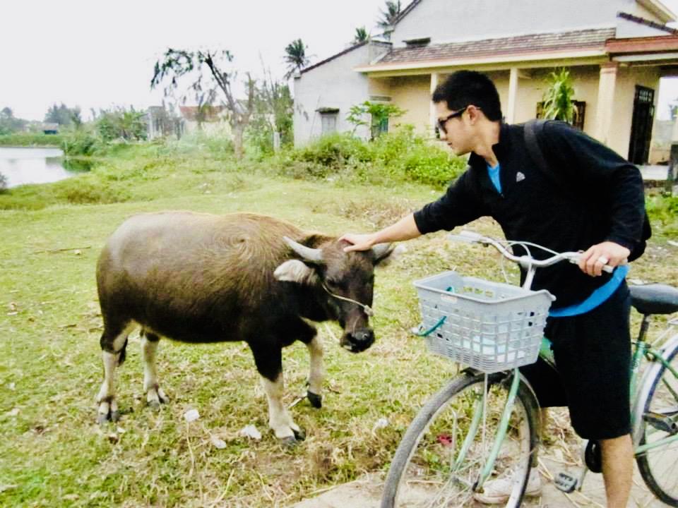 Water Buffalo encounter on bike