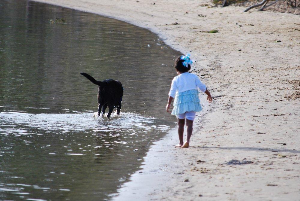 First Landing is a dog-friendly beach.