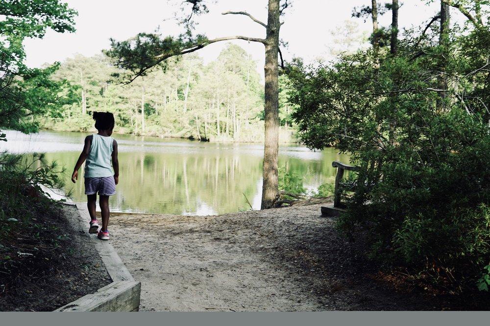 First Landing State Park Lake