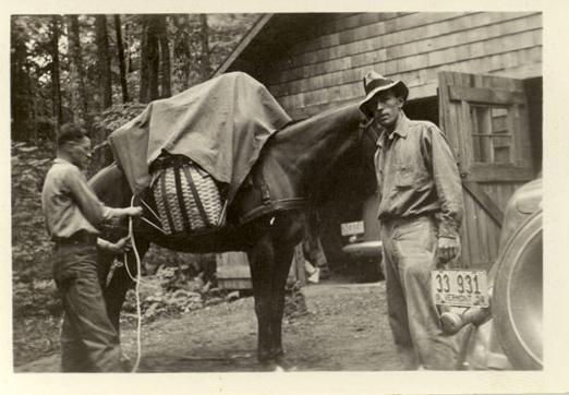StegnerpackinghishorseVermont1938.jpg