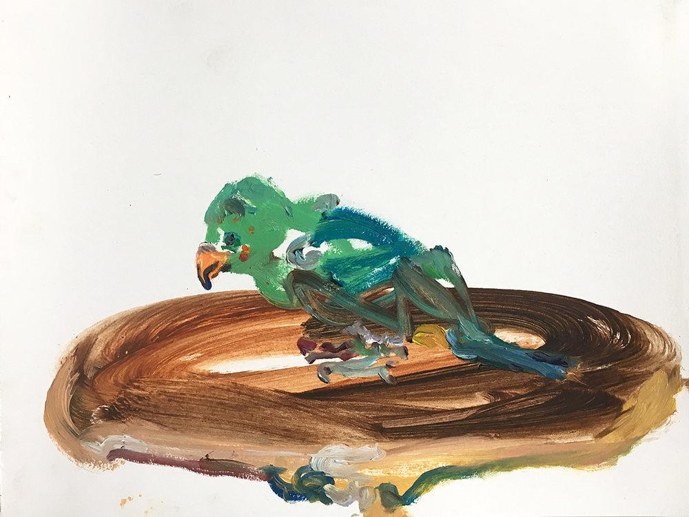 Petey Bird  2017 oil on paper 8.5 x 11 in.
