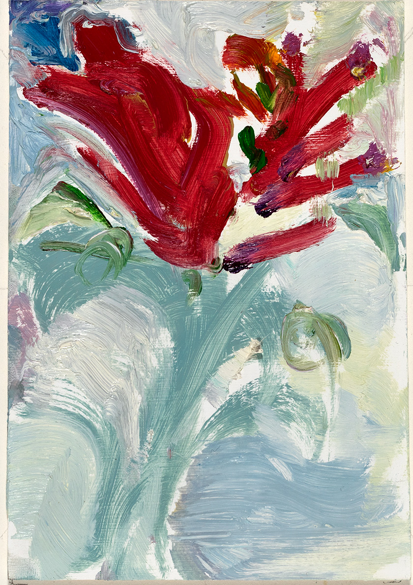 Crocosmia  2017 oil on paper 6 x 4 in.