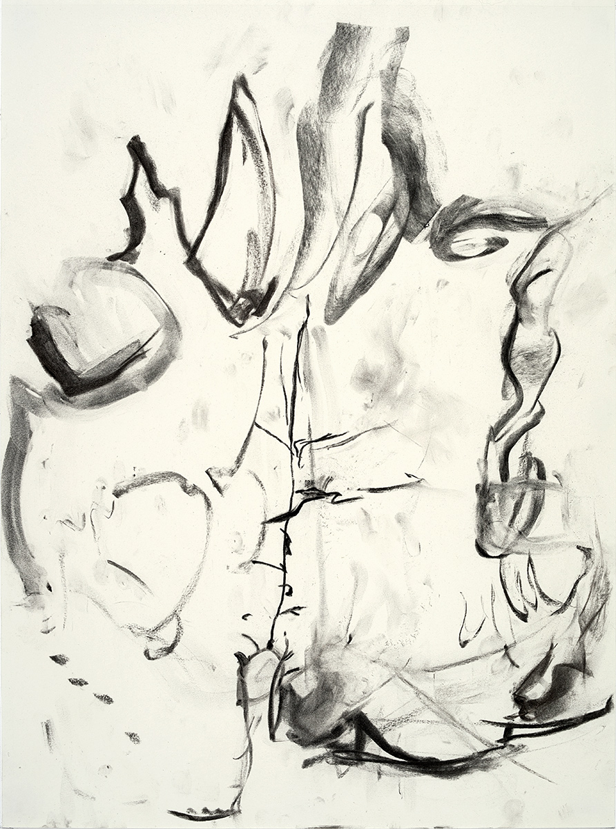 Vena Cava  2018 charcoal on paper 24 x 18 in.