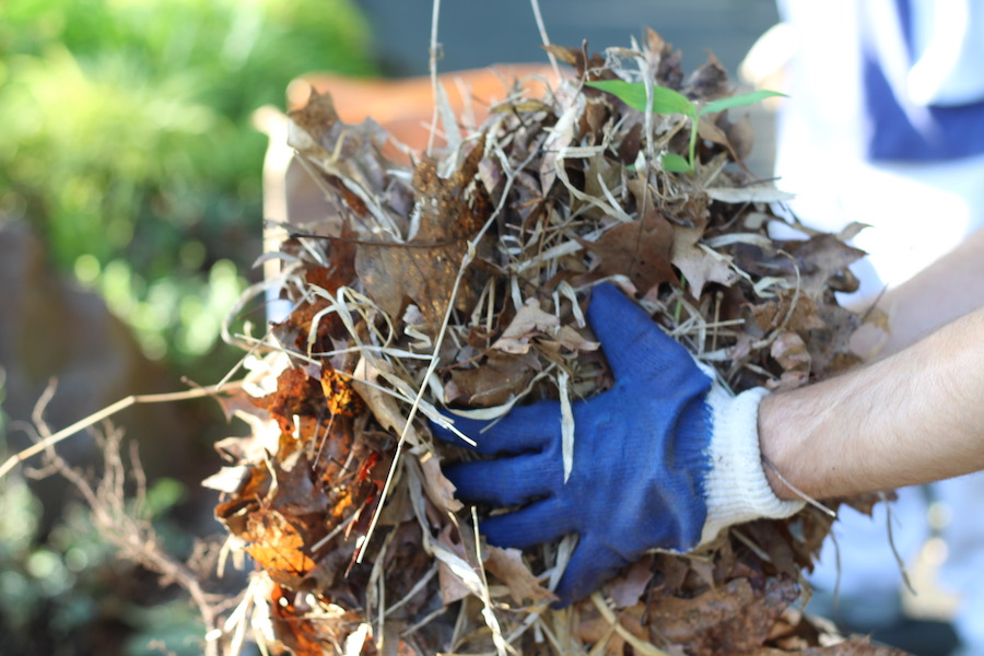 """Volunteer Thomas Breen lends a hand. """"It was a thrill when he said 'You got extra gloves?'"""" Thompson said. """"That  never  happens."""""""