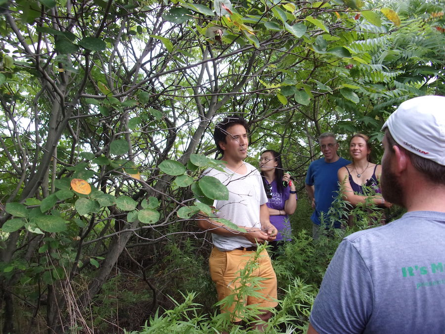 100_0476 at juneberry tree.JPG