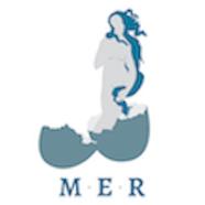 MER-Vert-512x512-01.png