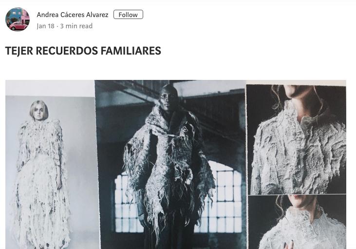 ANDREA CACERES WEB
