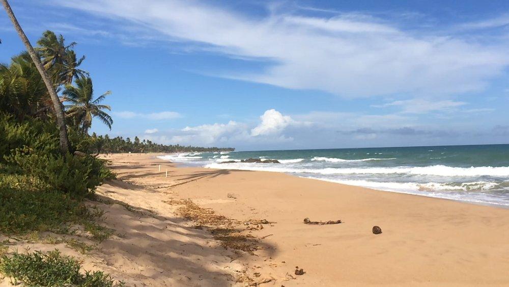 Welcome to Bahia -