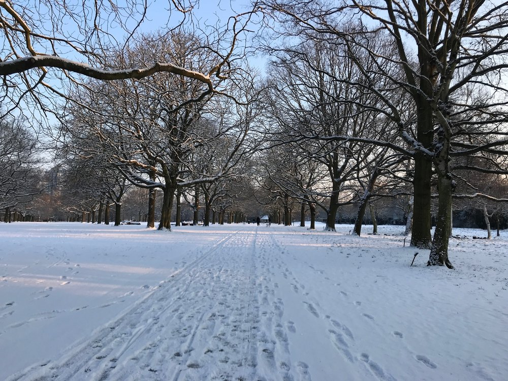 Winter and Snow in Walpole Park