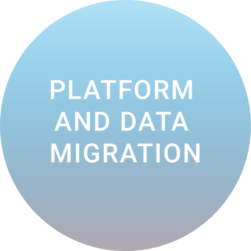 Platform and Data Migration_ENG.png
