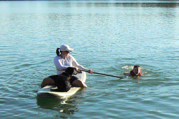 dog_onboard_600.jpg