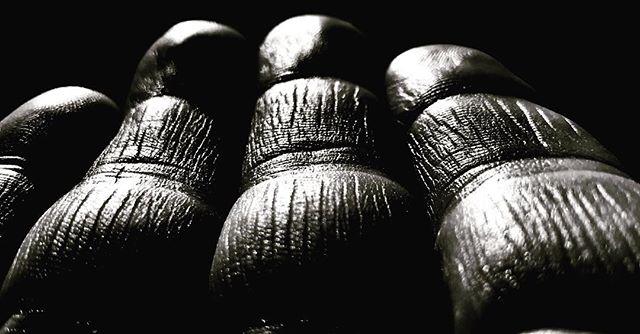 "Farm hands. ""Evidence of thirty years of farming and building on my hands."" 📷@winterbournefarms #winterbournefarms #humboldtlegends #responsiblecannabis #farmlife #farmstyle #homestead #hardwork #farming #cannabiscommunity"