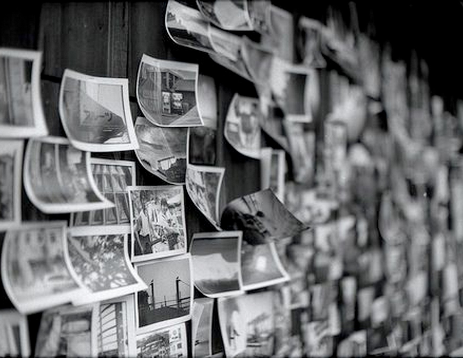 Black And White Photo Art Wall