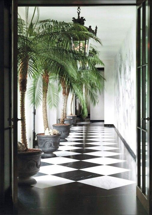 PALM + CHECKERED FLOORS